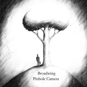 broadwing pinhole camera