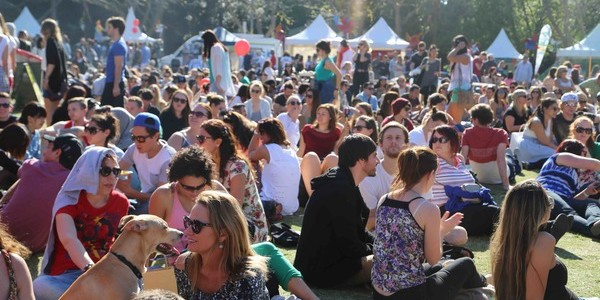 Surry Hills Festival 2015 Crowd