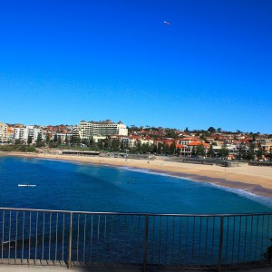 Coogee Club into administration