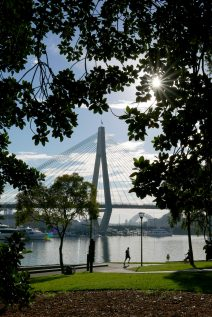 Glebe parks by Rozelle Bay may become completely alcohol-free